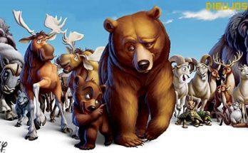 Dibujo Hermano oso