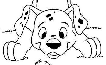Dibujo Perrito Dalmata observando a un pollito