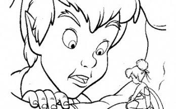 Dibujo Peter y su hada madrina