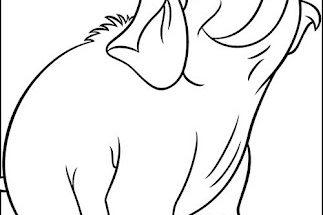 Dibujo Simpático elefantito para pintar