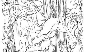 Dibujo La selva no siempre es buena