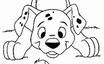 Dibujo Dalmata cachorro