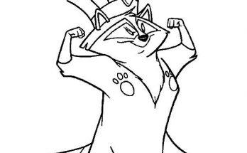 Dibujo El rey de los Mapaches